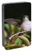 Ruby-throated Hummingbird - Juvenile Portable Battery Charger