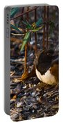Rufous Sided Towhee At A Glance Portable Battery Charger