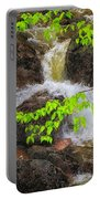 Rugged Landscape Portable Battery Charger