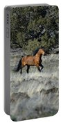 Running Bachelor Stallion Portable Battery Charger
