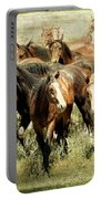Running Free Horses IIi Portable Battery Charger