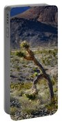 Running Man, Death Valley Portable Battery Charger