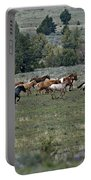 Running Wild Horses  Portable Battery Charger