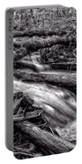 Rushing Stream - Bw Portable Battery Charger