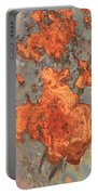 Rust Art Portable Battery Charger