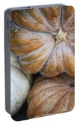 Rustic Pumpkins Portable Battery Charger