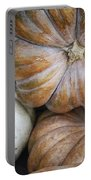 Rustic Pumpkins Portable Battery Charger