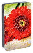 Rustic Red Dasies Portable Battery Charger