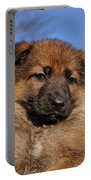Sable German Shepherd Puppy II Portable Battery Charger by Sandy Keeton