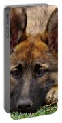 Sable German Shepherd Puppy Portable Battery Charger