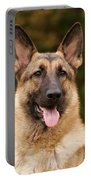 Sable German Shepherd Portable Battery Charger