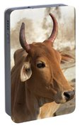 Sacred Cow Portable Battery Charger