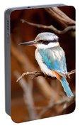 Sacred Kingfisher Portable Battery Charger