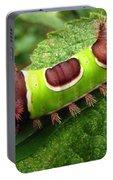 Saddleback Caterpillar Portable Battery Charger