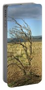 Sage Brush And Tumble Weed Portable Battery Charger