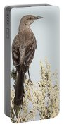 Sage Thrasher On Perch Portable Battery Charger