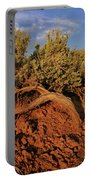 Sagebrush At Sunset Portable Battery Charger