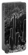 Saguaro Backlit Black And White Portable Battery Charger