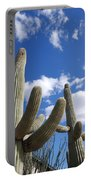 Saguaro Cacti  Portable Battery Charger