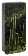 Saguaro Cactus Backlit Portable Battery Charger
