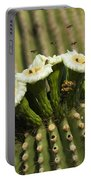 Saguaro Cactus Flower 8 Portable Battery Charger