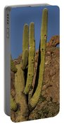 Saguaro Cactus Near Arch Portable Battery Charger