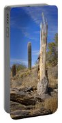 Saguaro Cactus Skeleton Portable Battery Charger
