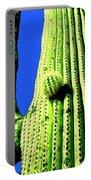 Saguaro Portable Battery Charger