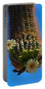 Saguaro Elephant Trunk Portable Battery Charger