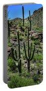 Saguaro Hillside Portable Battery Charger
