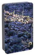 Saguaro Sunrise Portable Battery Charger