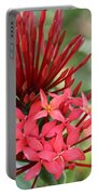 Saint Lucia Flower IIi Portable Battery Charger