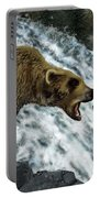 Salmon Fishing Portable Battery Charger