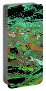Salmon Run 9 Portable Battery Charger