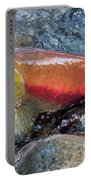 Salmon Spawning Portable Battery Charger