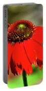 Salsa Red Coneflower Portable Battery Charger