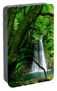 Salto Do Prego Waterfall Portable Battery Charger