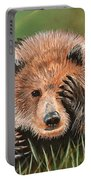 San Diego Bear Portable Battery Charger