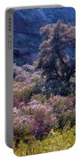 San Diego County Canyon Portable Battery Charger