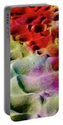 Sand Art Abstract Portable Battery Charger
