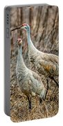 Sand Hill Crane Pair Portable Battery Charger