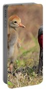 Sandhill Crane 13 Portable Battery Charger