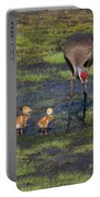 Sandhill Crane And Babies Portable Battery Charger