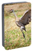 Sandhill Crane Morning Stretch Portable Battery Charger