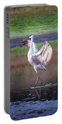 Sandhill Crane Painted Portable Battery Charger