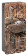 Sandhill Crane Preening Portable Battery Charger