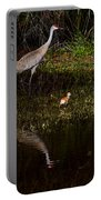 Sandhill Cranes And Chicks Portable Battery Charger