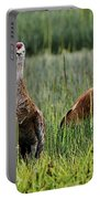 Sandhill Cranes II Portable Battery Charger