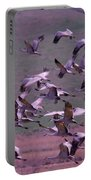 Sandhill Cranes  Portable Battery Charger by Jeff Swan