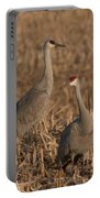 Sandhill Cranes On Watch Portable Battery Charger